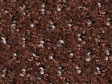 Balmora Chocolat   Karo Halı