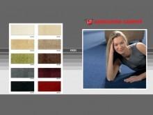 Focus | Duvardan Duvara Halı | Associated Weavers