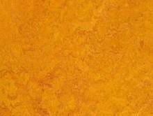 Real Marigold | Pvc Yer Döşemesi